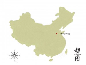 Shandong province is in north-east China